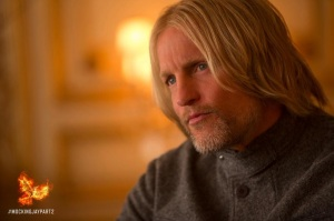 haymitch-capitol-voting