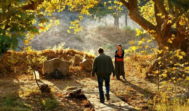 The Wild Pear Tree-film still1